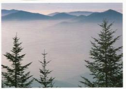 Great Smoky Mountains (Waterrock Knob 1920 M. Carte Postale, Circulée, éditions J.Scott - Etats-Unis
