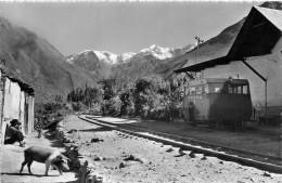 Ollantaitambo El Novado El Padre Eterno  Gare, Locomotive, Cochon  Cpsm,pf - Peru