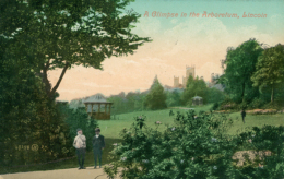 GB LINCOLN / A Glimpse In The Arboretum / CARTE COULEUR GLACEE - Lincoln