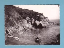 Var, ILE Du LEVANT, PLAGE RIOUFREDE, Barque // FORMAT 10 X 15 - Francia
