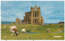 Whitby Abbey, 1970 Postcard - Whitby