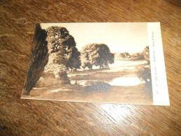 CPA Du Morvan - N°63 - Etang De Ponay - Signé Lucien Seevagen Artiste Peintre(1887-1959) - Illustrateurs & Photographes
