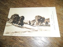 CPA D'un Paysage à Saint Léger Sous Beuvray - N°59 - Morvan - Illustrateur Lucien Seevagen Artiste Peintre(1887-1959) - Autres Communes