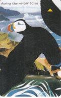 JERSEY ISL. - Puffins(puzzle 2/6), CN : 68JERB(normal 0), Tirage %20000, Used