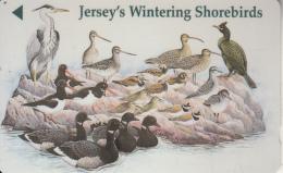 "JERSEY ISL. - Jersey""s Wintering ShoreBirds, CN : 46JERM(0 With Barred), Used - United Kingdom"