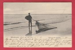 Wenduine / Wenduyne - Pêcheurs De Crevettes ... à Pied - 1902 ( Verso Zien ) - Wenduine