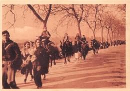 ¤¤   -  10   -   Sur La Route Entre Le BOULOU Et ARGELES   -  Guerre D´ Espagne   -  ¤¤ - France