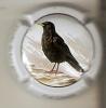 PLACA DE CAVA CAL LLUSIA DE UN PAJARO-BIRD  (CAPSULE) GRALLA DE BEC GROS  (RARA) - Placas De Cava
