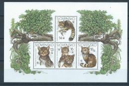 Slovaquie 2003 Bloc 21 Neuf Avec Chats - Domestic Cats