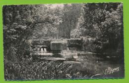 DORDIVES - Les Bords Du Loing Le Pont Et Le Barrage De La Goulette Photo Véritable Circulé 1956 - Dordives
