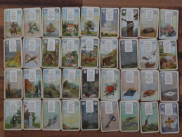 JUDAIKA - 36 Tarot Karten?, Schneider-Co.AG, Altenburg SA, Gute Zustand,10 Scan - Tarot-Karten