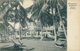 JM KINGSTON / Marine Gardens / - Autres