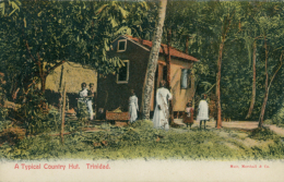TT TRINIDAD AND TOBAGO DIVERS   / A Typical Country Hut / CARTE COULEUR - Trinidad