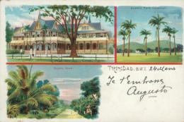 TT TRINIDAD / Country Road, Queen's Park Savannah / CARTE COULEUR - Autres