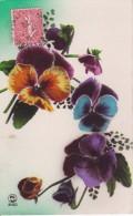 AK Stiefmütterchen - 1929 (23026) - Blumen