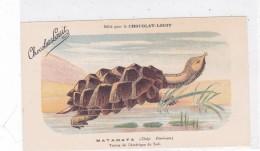 "CARD TARTARUGA-TORTUE ""MATAMATA ""  PUB ""CHOCOLAT-LOUIT  FIRMA E.C.-FP-N-2-0882-25306 - Tortugas"