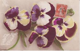 AK Stiefmütterchen - Bonnes Pensées - 1916 (23032) - Blumen