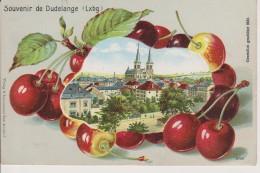 LUXEMBOURG-DUDELANGE-LITHO GAUFREE-BELLE CARTE - Dudelange