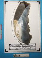 Préhistoire, Néolithique, Superbe FAUCILLE En Silex Taillé. Neolithic. - Archeologia