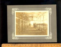 Photographie Originale : Photo Intérieur Usine Moulinage Textile Tréfilerie Machines Machinery Plant - Métiers