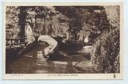 Dunster - The Pack Horse Bridge - Altri