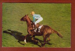 1 Cpa Postillon Calendrier Des Courses - Juin 1967  - Freddy Head - Calendriers