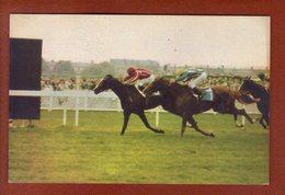 1 Cpa Postillon Calendrier Des Courses - Mai 1967  Freddy Head - Calendriers