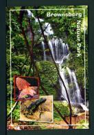 SURINAM  -  Brownsberg Nature Park  Princess Irene Falls   Used Postcard As Scans - Surinam