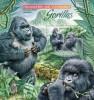 Uganda. 2012 Gorillas. (405b) - Gorillas