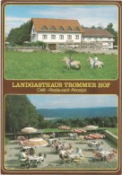 R64 Tromm - Landgasthaus Trommer Hof - Cafè Restaurant Pension / Non Viaggiata - Germania
