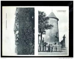D 12 03 10  AUDE  AU PREMIER ACHETEUR  Carte Double Palau, Saint Frichoux Vue Générale, La Tour Du Château. - Otros Municipios