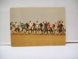 Les Cèlèbres Fantasias Du Nord. De La Couleur Et Une Ambiance Formidable  Nord  Camerun - Camerun