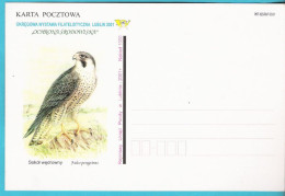 Poland 2001, Lublin, Poczta Polska, Entire, Postcard, Falcon, Birds, Oiseau, LIMITED EDITION - Aigles & Rapaces Diurnes