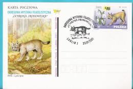 Poland 2001, Lublin, Poczta Polska, Entire, Postcard, Lynx, Wild Cat , Chat , Katze LIMITED EDITION - Félins