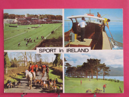 Irlande - Sport In Ireland - Hunting Angling Shooting Golfing Horse-racing - Beau Timbre - Scans Recto-verso - Irlande