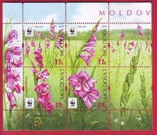 R* MOLDOVA 4 V. SET + LABEL WWF FLOWERS SABIUTA GLADIOLUS IMBRICATUS 2016 - Moldova
