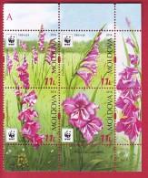 R* MOLDOVA 4 V. SET WWF FLOWERS SABIUTA GLADIOLUS IMBRICATUS 2016 - W.W.F.