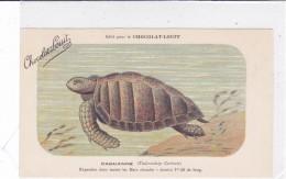 "CARD TARTARUGA-TORTUE ""CAOUANNE""  PUB ""CHOCOLAT-LOUIT  FIRMA E.C.-FP-VDB-2-0882-25310 - Tortugas"