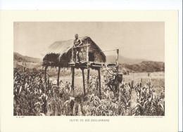 INDOCHINE ANNAM Hutte De RAÏ Planche Neuve. Dos Vierge TB 290 X 200 Mm - Vecchi Documenti