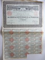 Corporation Minière Du Mexique Cinq Cents Francs N°208,958 - Actions & Titres