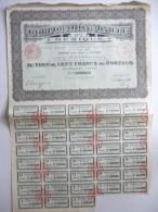 Corporation Minière Du Mexique Cinq Cents Francs N°208,960 - Actions & Titres