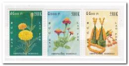 Laos 2004, Postfris MNH, Flowers - Laos