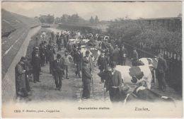 26928g  QUARANTAINE STALLEN -  ETABLE - Esschen - 1907 - Essen