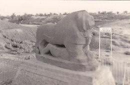 Iraq - Irak - Babylon -Lion Babylon - Baghdad - Photographie - Archéologie - Iraq