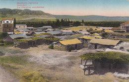 Palestine Cisjordanie  - Jericho - Village