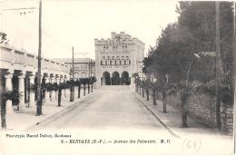 HENDAYE Avenue Des Palmiers  TTB - Hendaye