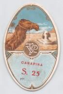 "04321 ""T & V - CANAPINA S.25""  ETICHETTA ORIGINALE PER FILATI/TESSUTI - LORIGINAL LABEL FOR THREADS - Adesivi"