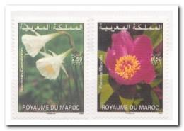 Marokko 2006, Postfris MNH, Flowers - Marokko (1956-...)