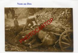 CHEVAUX Tues-CADAVRES-Nom Au Dos-Orainville-??-02-Carte Photo Allemande-Guerre 14-18-1 WK-Militaria- - Oorlog 1914-18