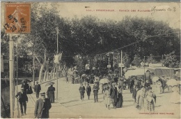 550- PERPIGNAN - Entrée Des Platanes - Ed. Labouche - Perpignan